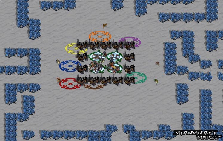 Cat N Mouse (StarCraft : Brood War) - GameMaps
